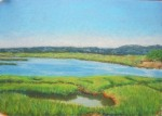 Marsh Study, Cape Cod Marsh - Summer