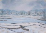 Marsh Study, Cape Cod - Winter
