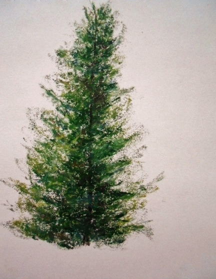 how to draw a tree with oil pastels