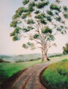 Gum Tree 1, Day 14