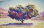 Tree Study from Susan Sarback's book