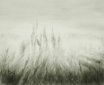 Misty Wheat Field, graphite