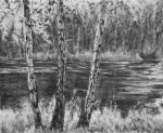 River Birches, charcoal