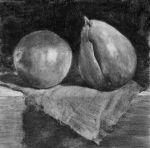 The Pears, graphite and charcoal