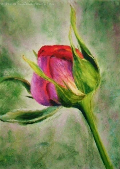 Oil Change Boulder >> Flowers Challenge | Oil Pastels by Mary
