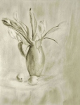 Tulips in Light, graphite