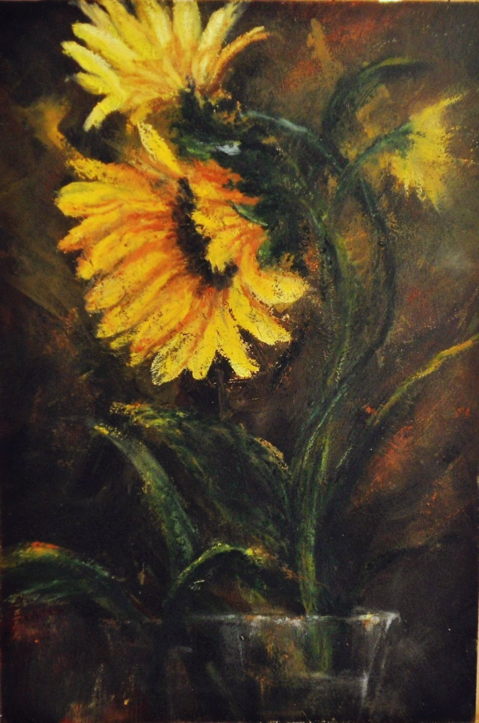 sunflower study oil pastel oil pastels by mary