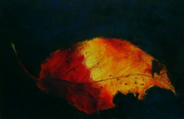 CT Fall Leaf